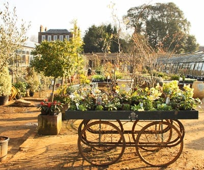 A sunny spring day at Petersham Nurseries in Richmond