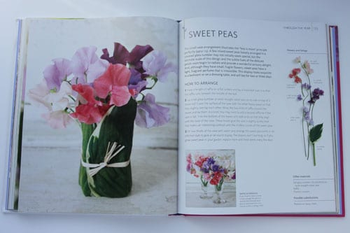 A simple sweet pea arrangement for you to make…