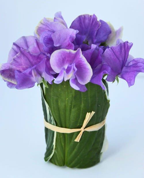 A Simple Sweet Pea Arrangement For You To Make
