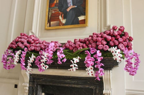 Flowers at Chicheley Hall 2011 : Part 1