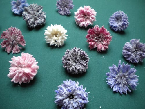 Beautiful crystallised edible flowers from Meadowsweet Flowers