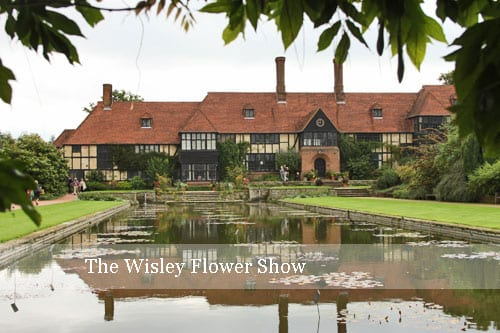 A morning at The Wisley Flower Show in Surrey…