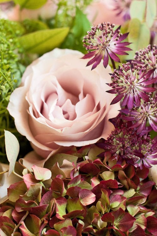 Scarlet-&-Violet-Bouquet