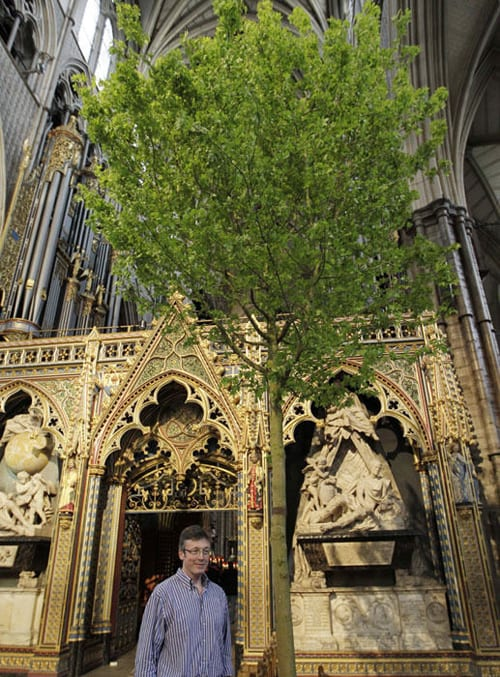 Shane-Connolly-Westminster Abbey