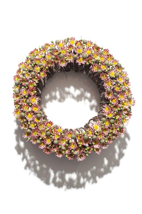 David Ragg - Floral Design