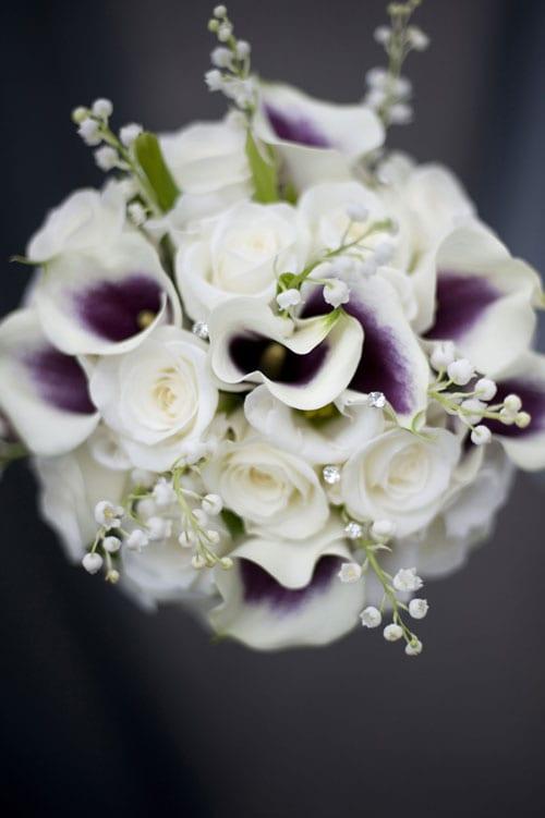 Pearl-Pictures_Flowerona_Brocklesby