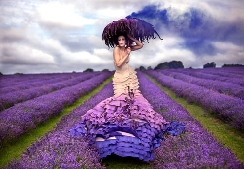 The-Lavender-Princess-Kirsty-Mitchell