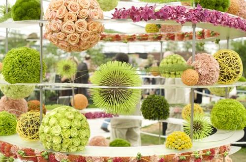 David Ragg - RHS Chelsea Flower Show