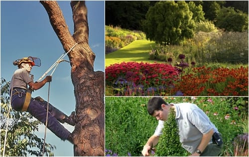 RHS Images - Horticulture Industry