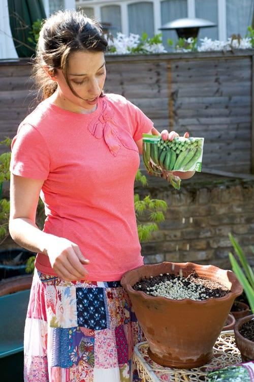 Laetitia-Maklouf-Sweet-Peas-for-Summer