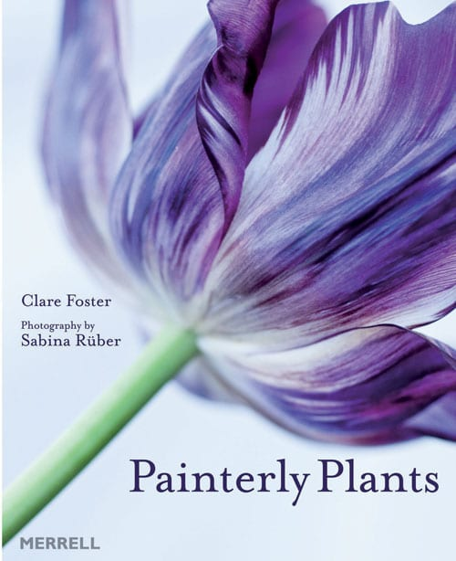 Painterly Plants - Clare Foster & Sabina Ruber