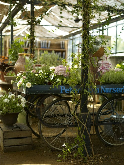 Petersham-Nurseries-David-Loftus