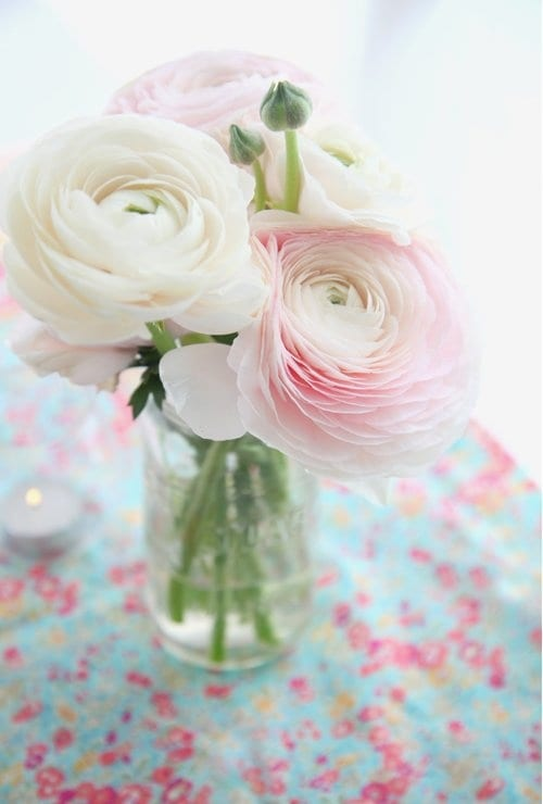 Ranunculus via Decor8 Image by Emilie Guelpa