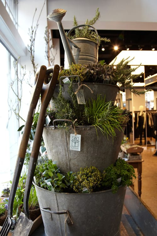 Chelsea Fringe 2012…a brand new 'alternative' gardening festival