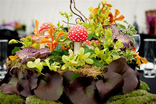 Floral arrangements designed by Mood Flowers for the Women of Influence Awards 2012