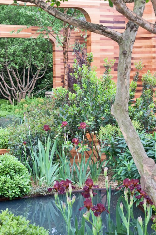 Joe Swift's Show Garden For The