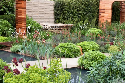 RHS Chelsea Flower Show – Joe Swift's Show Garden for the Homebase Teenage Cancer Trust