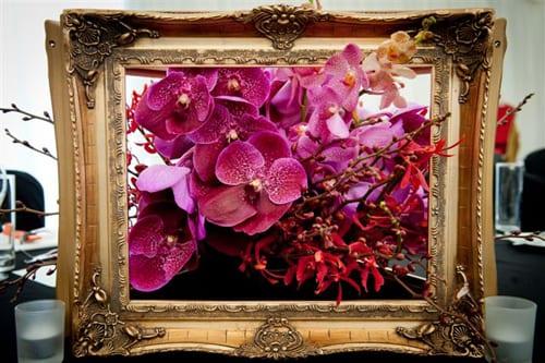 Katie-Melua-Nick-Priestly-Mood-Flowers
