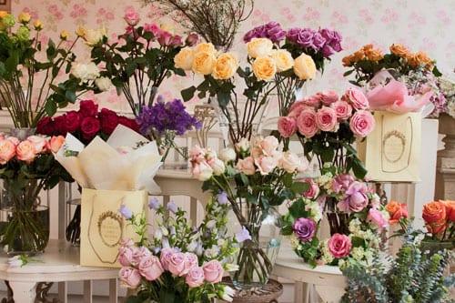 La-Maison-des-Roses
