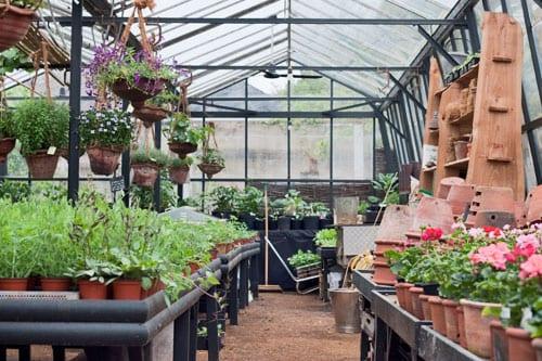 Garden Shop Launch Event at Petersham Nurseries in Richmond