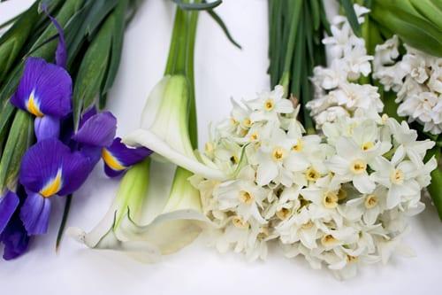 Spirit-of-Summer-2012-Wendy-Black-Dorchester-Flowerona