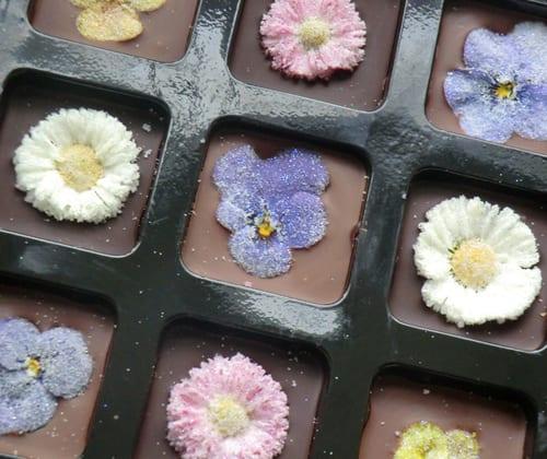 Eat-My-Flowers