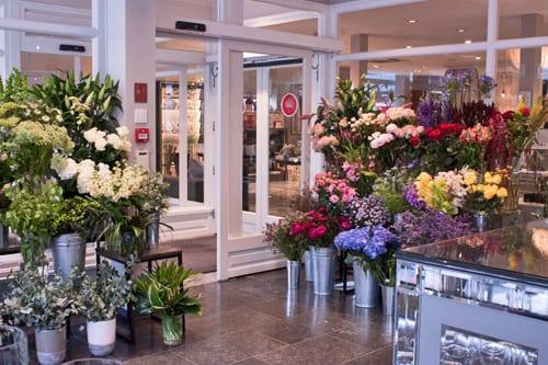 Flowers by evitavonni in farnham flowerona for Flower shop design layouts