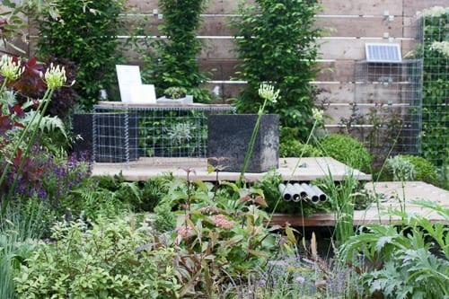 Growing-a-Fairer-Future-BBC-Gardeners-World-Live-Flowerona