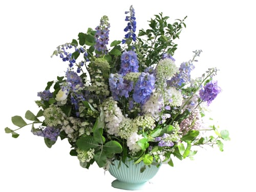 delphinium-boat-The-Flower-Appreciation-Society