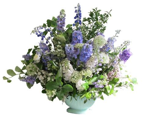 delphinium-boat-The-Flower-Appreciation-Society