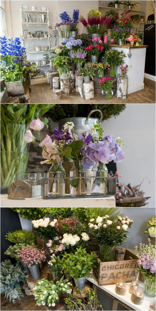 Interview with Fran Bailey of The Fresh Flower Company