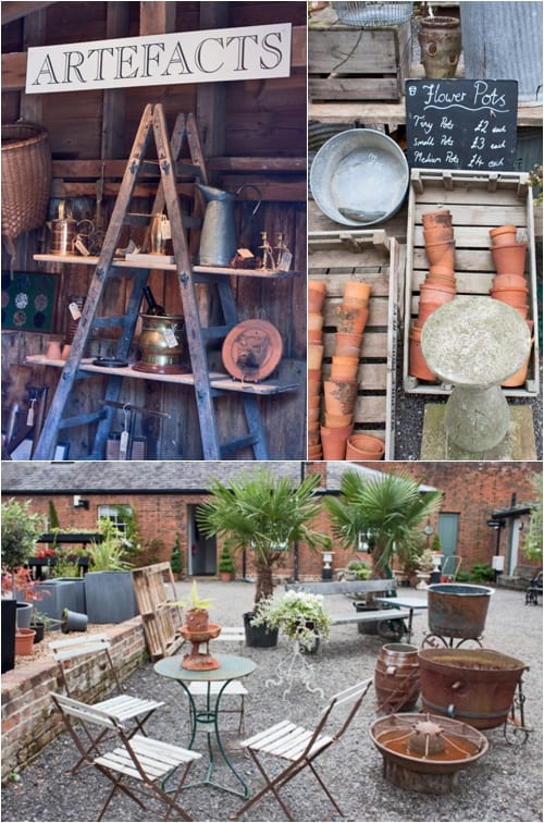 The Medicine Garden, Cobham - Flowerona