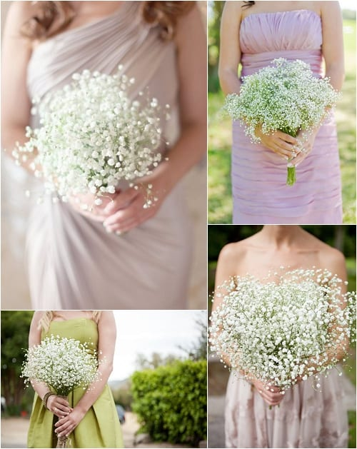 Gypsophila aka Baby's Breath is back in fashion, especially for wedding flowers…