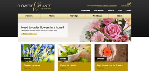 Interflora-Website-Flowers-&-Plants