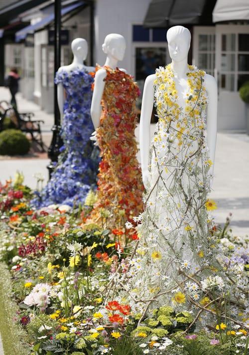 Kildare_Village_floral_daisy