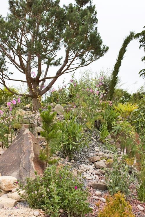 RHS-Hampton-Court-Palace-Flower-Show-2012-Discover-Jordan-Garden-Flowerona