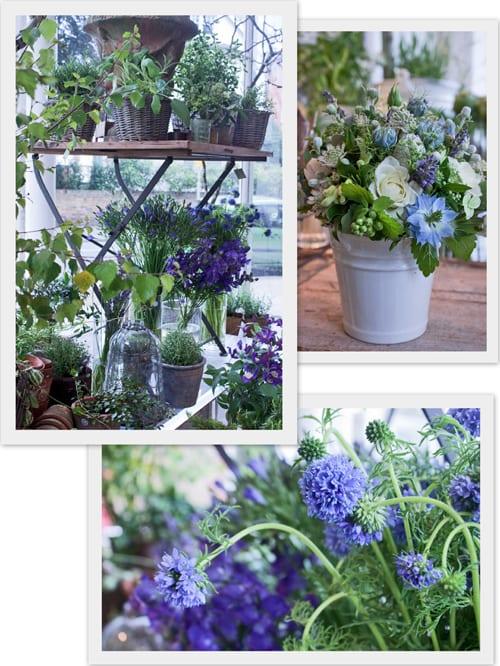 Zita-Elze-Florist-Shop-Flowerona