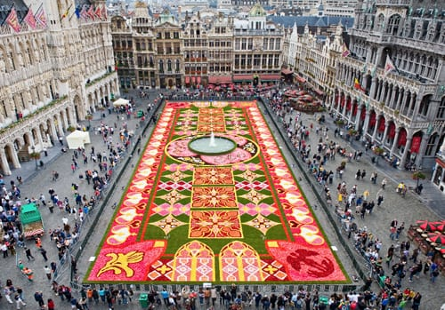 Brussels' Flower Carpet…The new 2012 design opens tonight