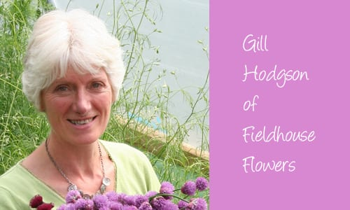 Gill-Hodgson-Field-House-Flowers