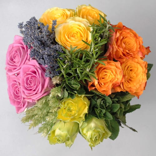 Flowerona reflects: Anemones & Austen