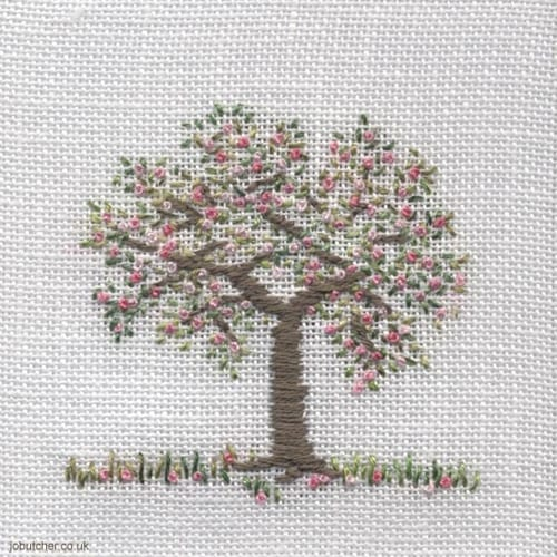Jo-Butcher-apple-tree-blossom