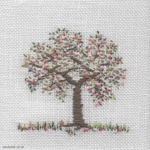 Jo-Butcher-apple-tree-blossom