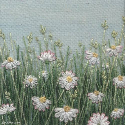 Jo-Butcher-daisy-meadow