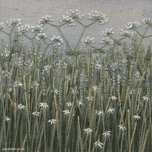 Jo-Butcher-grass meadow cow parsley