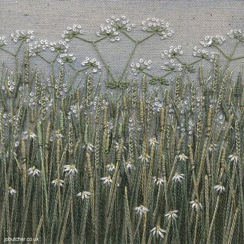 Jo-Butcher-grass meadow cow parsley
