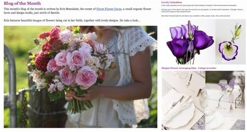 Flowerona Newsletter