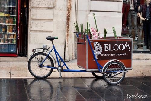 Bordeaux-Flowerona