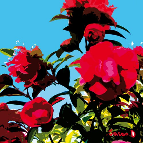 'Bush Flower' - Jason D Prints