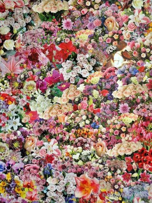 Introducing floral collage artist, Valeria Alevra…