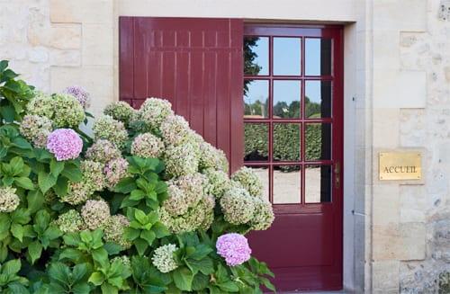 Hydrangeas-in-France-Flowerona